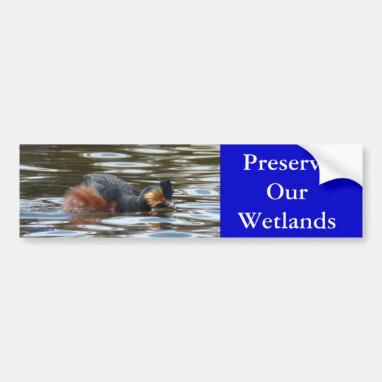 B8 Eared Grebe Courting Bumper Sticker
