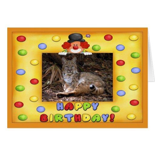 b-bobcat-29 card