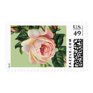 B color de rosa español de Ceci Nueva York Sello Postal