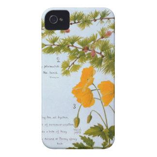 B iPhone 4 Case Nature Journal Flora & Fauna 1