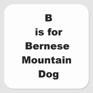 b is for bernese mt dog.png square sticker