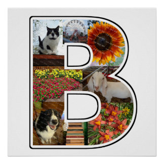 B Monogram Create Your Own 8 Custom Photo Collage Poster