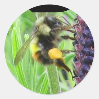 B - Pegatina de la abeja