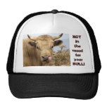 B.S.Beware Hat~ Kimberly P-Chadwick
