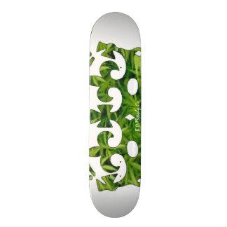 B..T SkateBoard