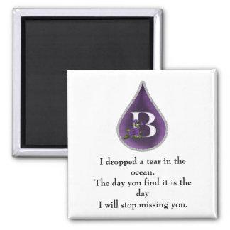 B Tear Magnet