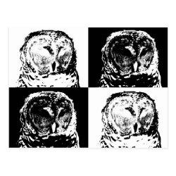 Postcard with B/W Barred Owl Pop Art design