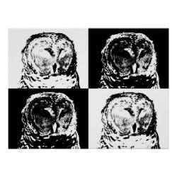 B/W Barred Owl Pop Art Matte Poster