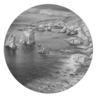 B&W beach coastline, California Melamine Plate