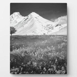 B&W Beautiful Alps Plaque