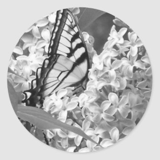 B&W Beauty Classic Round Sticker