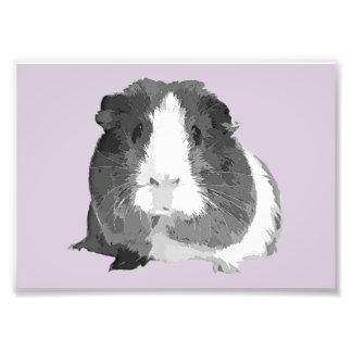 B&W 'Betty' Guinea Pig Print (Frames Available!) Photo Print