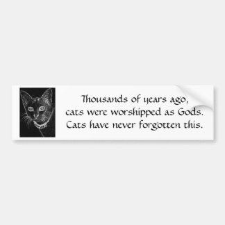 B&W Cat Bumper Sticker