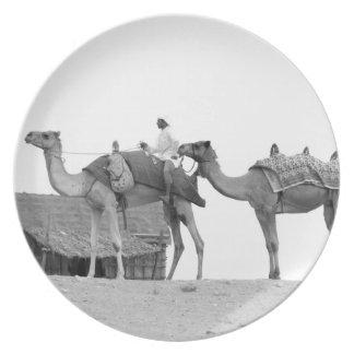 B&W Dubai desert Plate