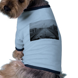 B&W el Taj Mahal Camiseta Con Mangas Para Perro