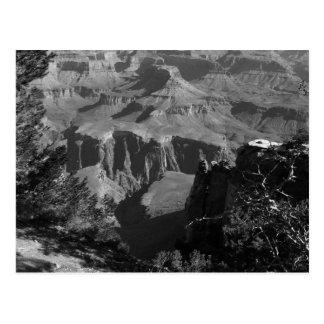 B&W Grand Canyon 4 Postcard