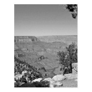 B&W Grand Canyon National Park 3 Postcard