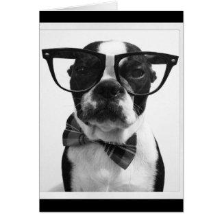 B&W Hipster Nerd Boston Terrier Cards
