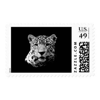 B&W Jaguar Postage