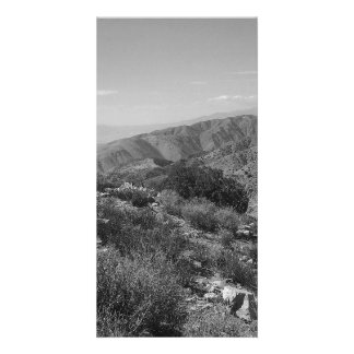 B&W Joshua Tree National Park 2 Card