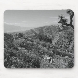 B&W Joshua Tree National Park 2 Mouse Pad