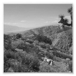 B&W Joshua Tree National Park 2 Photo Print