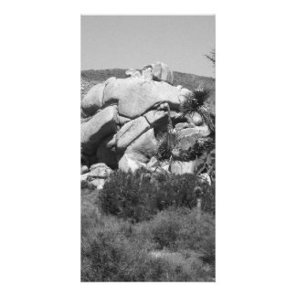 B&W Joshua Tree National Park 5 Card