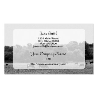 B/W Landscape with Horses and Cows Double-Sided Standard Business Cards (Pack Of 100)