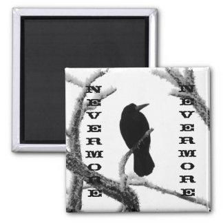 B&W NEVERMORE Winter Raven - Edgar Allan Poe 2 Inch Square Magnet