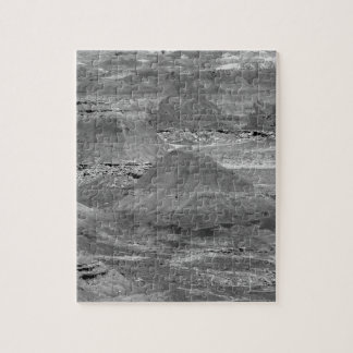 B&W Petrified Forest 2 Jigsaw Puzzle