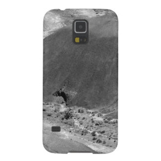B&W Petrified Forest 3 Galaxy S5 Cases