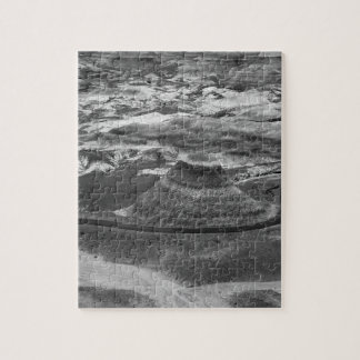 B&W Petrified Forest Jigsaw Puzzle