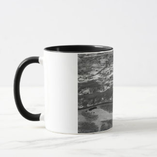 B&W Petrified Forest Mug