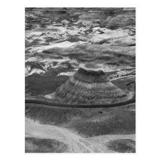 B&W Petrified Forest Postcard