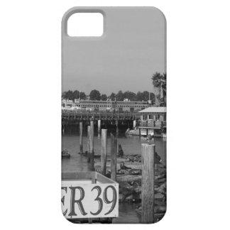 B&W Pier 39 Sea Lions iPhone SE/5/5s Case