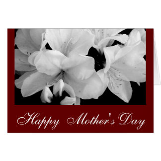 B&W Rhododendron/ Mother's Day Card