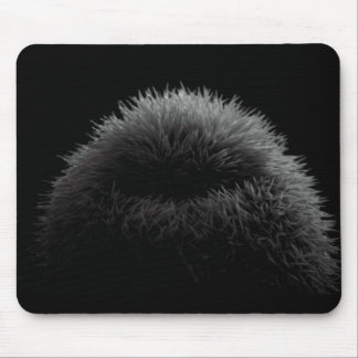 B&W silhouette Mouse Pad