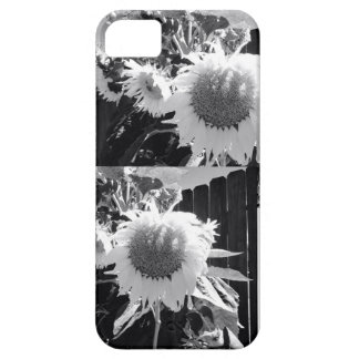 B&W Sunflower IPhone Case iPhone 5 Covers
