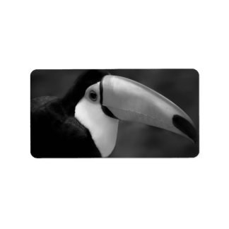 B&W Tucano bird Label