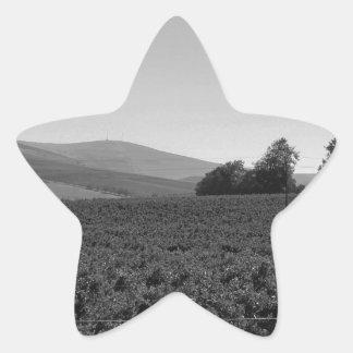 B&W Vineyard Star Sticker