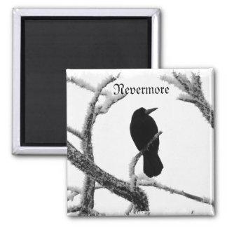 B&W Winter Raven Edgar Allan Poe 2 Inch Square Magnet