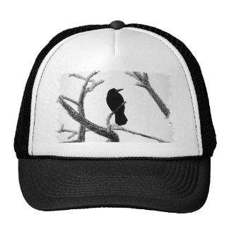 B&W Winter Raven Edgar Allan Poe Trucker Hat
