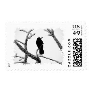 B&W Winter Raven Edgar Allan Poe Postage Stamps