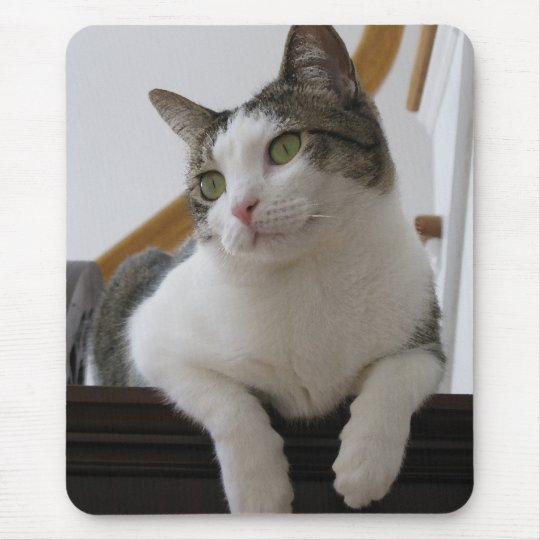 BA- Grey and White Kitty Cat Smiling Mousepad
