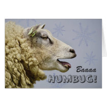 Baa Humbug blank Holiday Greeting Card