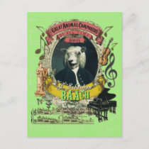 Baach Funny Sheep Great Animal Composer Bach Postcard