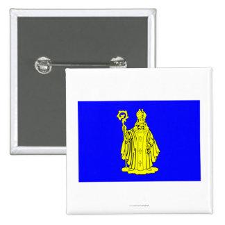 Baarle-Hertog Flag Pinback Button