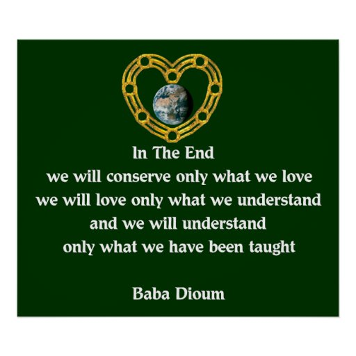 Baba Dioum Quote Poster