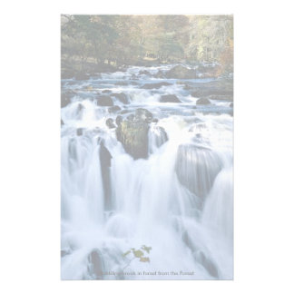 Babbling brook in forest from the Forest Custom Stationery