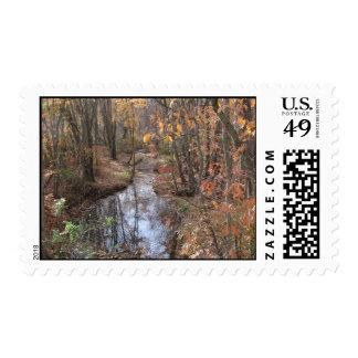 Babbling Brook Stamp